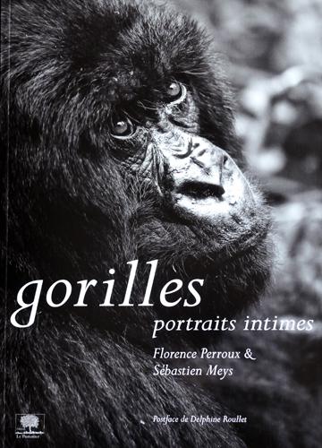 Portrait-Gorille