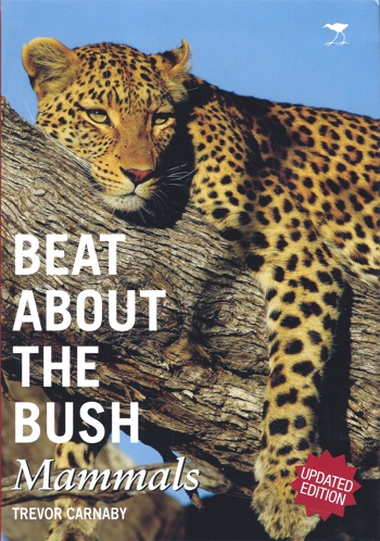 Beat-About-The-Bush-01